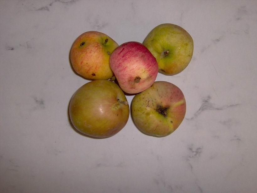 Взять яблоки (5 шт.)